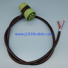 China RoHS Deutsch 9 Pin J1939 Cable Pass Through To Open End Cable supplier